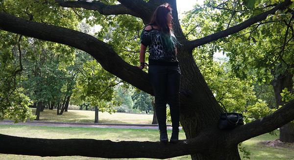 In Prag auf nen Baum klettern... kann man mal machen.